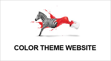 color theme website
